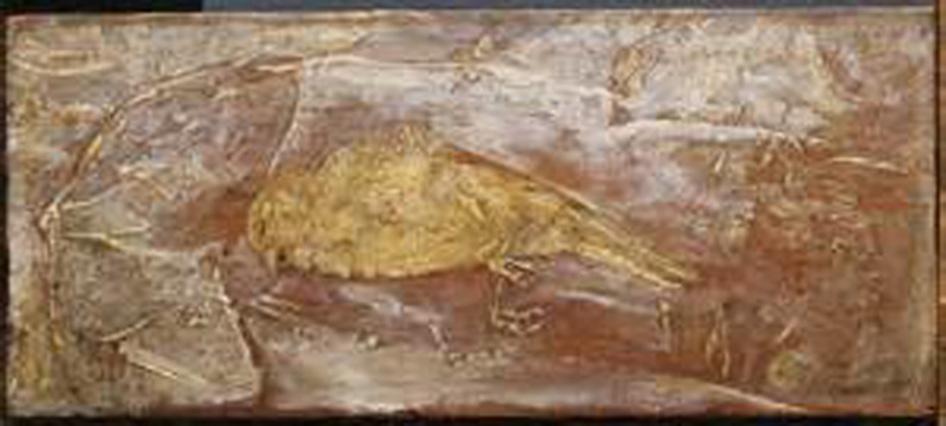 deadbird1
